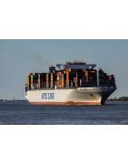 El precio de transporte marítimo en línea